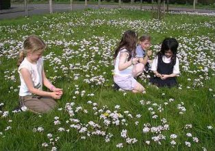 Girls play in a flowery field
