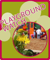 Playground Watch
