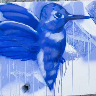 Another section of the mural, with a large hummingbird.